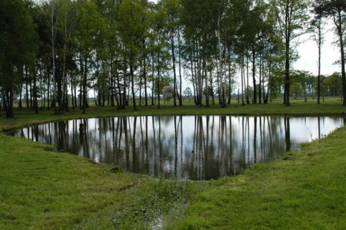 Ashes Pond Auschwitz