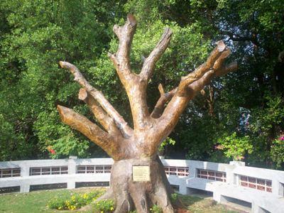 Heaven's Tree Jakarta