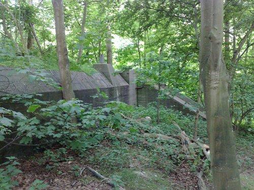 German Hospital Bunker (118a Sanitätsunterstand) Slotbos Haamstede