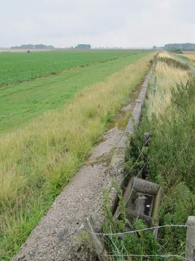 Muralt Walls Arnemuiden