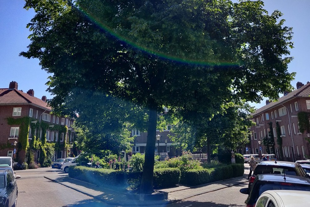 Vrijheidsboom Amsterdam