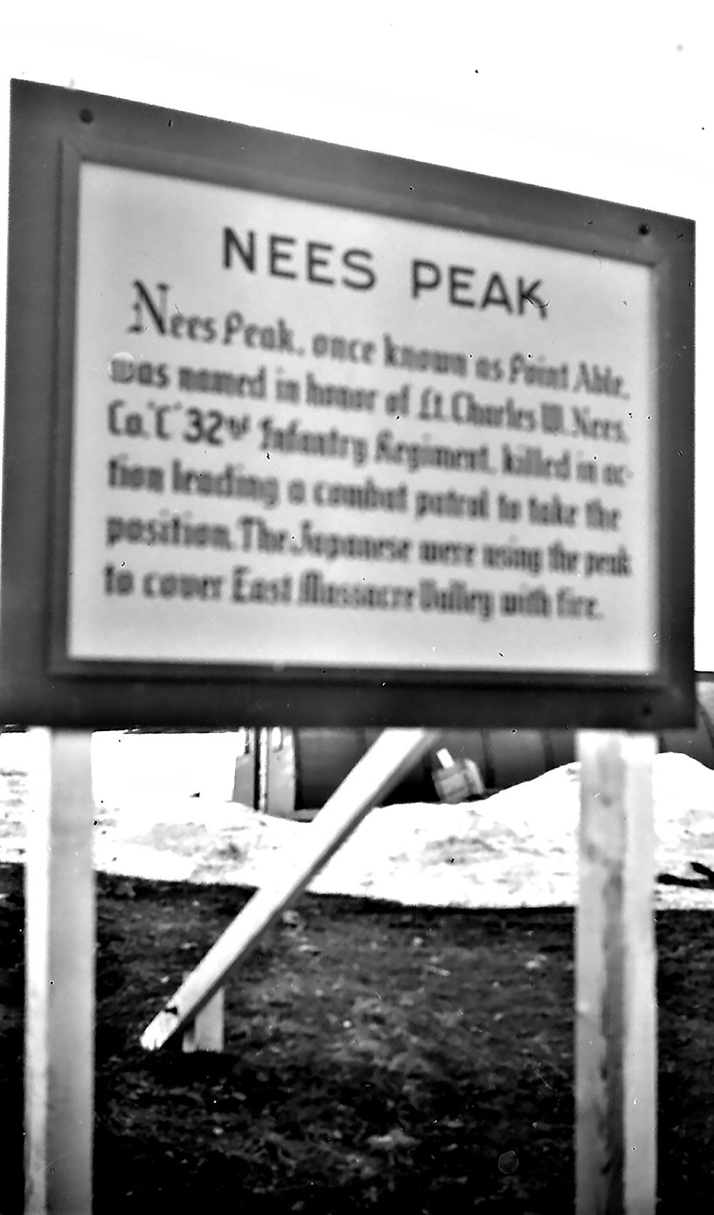 Nees Peak