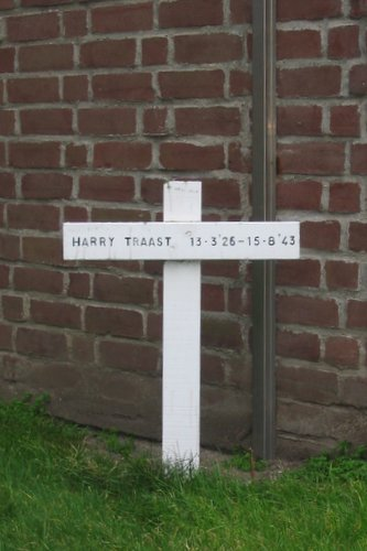 Monument Harry Traast