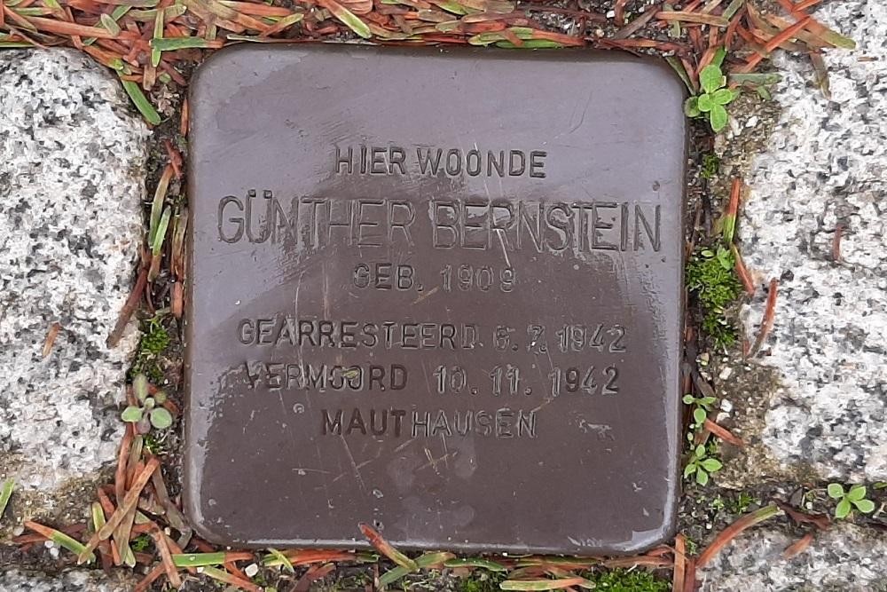 Stumbling Stone Van Bergen IJzerdoornpark 9