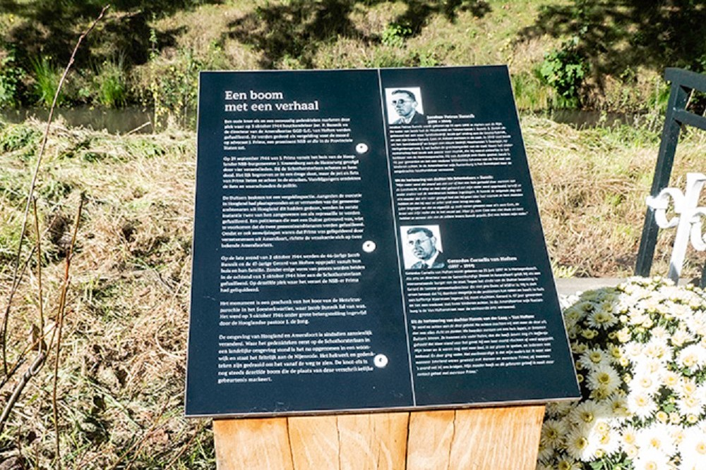 Plaque Tree With A Story
