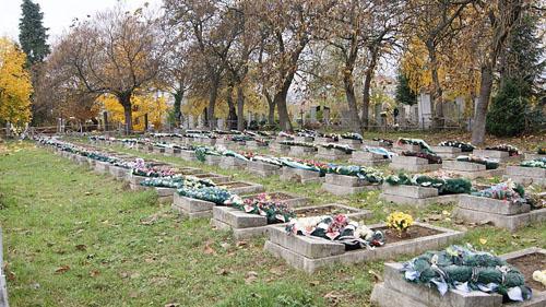 Soviet War Graves Mukachevo