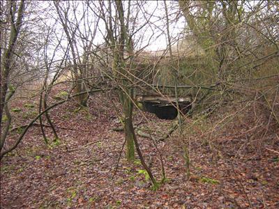 Westwall - Regelbau 23 MG Bunker Kronenburg