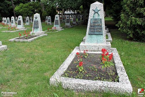 Sovjet Oorlogsbegraafplaats Wolsztyn