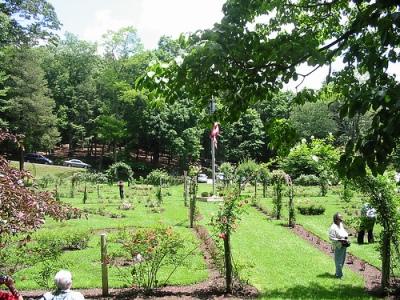 Memorial Rose Garden