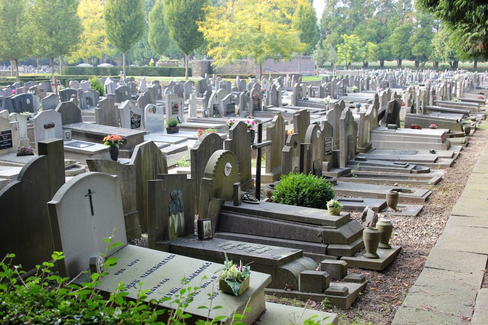 Veteran War Graves Ninove