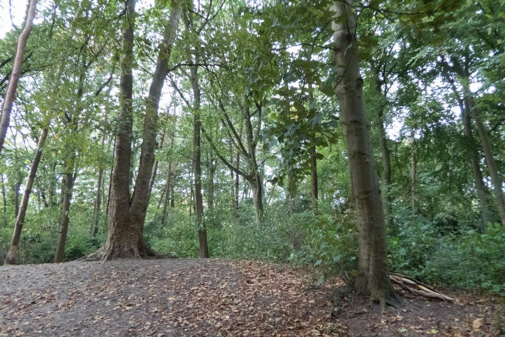 German Forest Sint-Michielsgestel