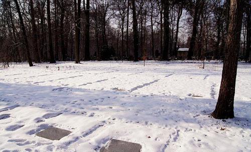 Sovjet Oorlogsbegraafplaats Pszczyna