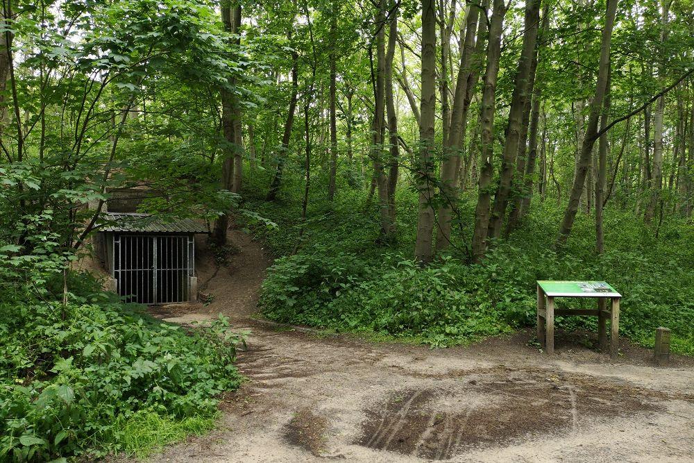 The Art Bunker