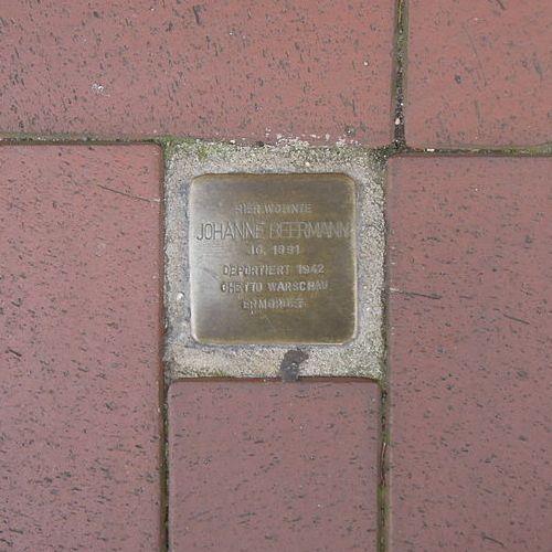 Stolperstein Mühlenstraße 14