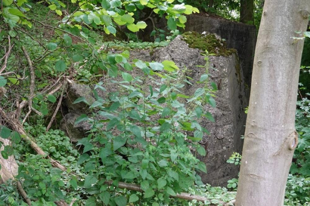 Remains Bunker 243