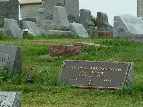 Veterans Graves Mount Carmel Cemetery