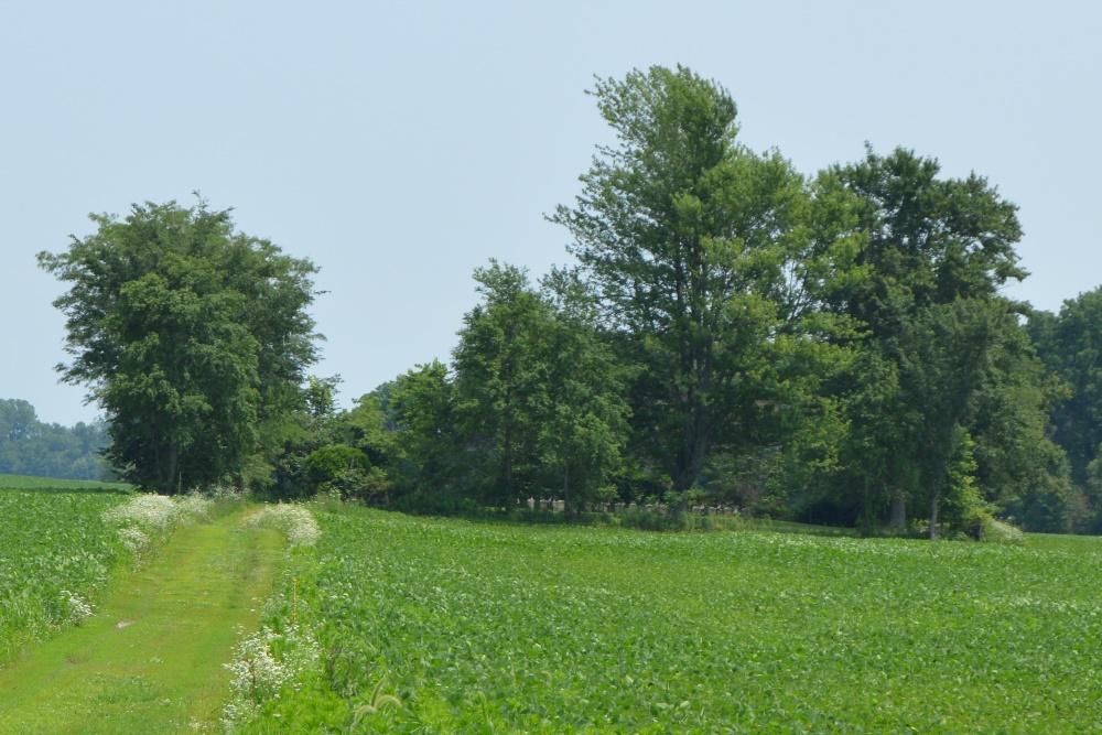 Begraafplaats Fort McArthur
