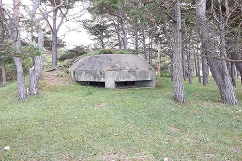 Swedish Bunker Brucebo