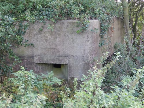Stützpunkt 269 Heliotrop - Vf3 MG rundum Stand