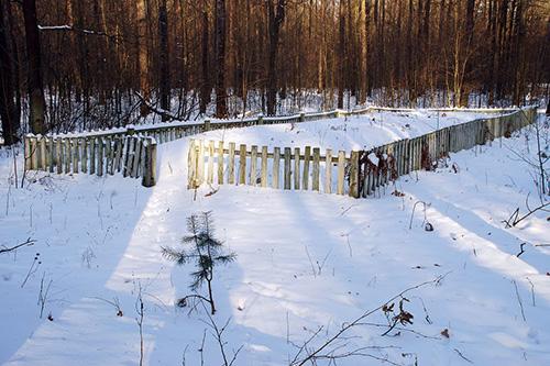 Massagraven Slachtoffers Stalag 358