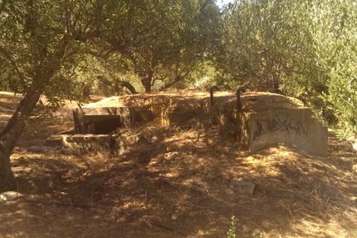 MG-Pillbox Hill 107
