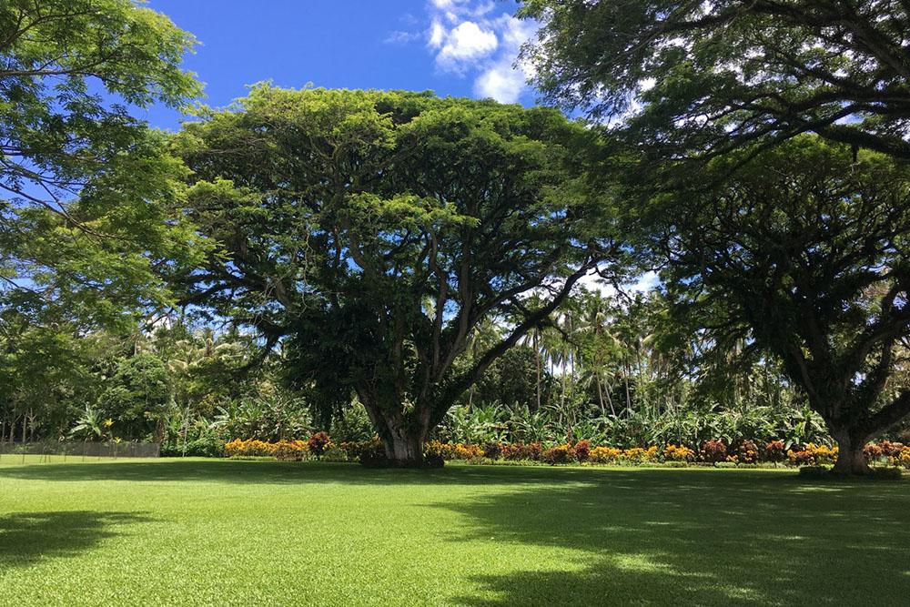Commonwealth War Cemetery Rabaul