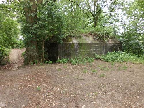 Pantherstellung - Bunker R008-P