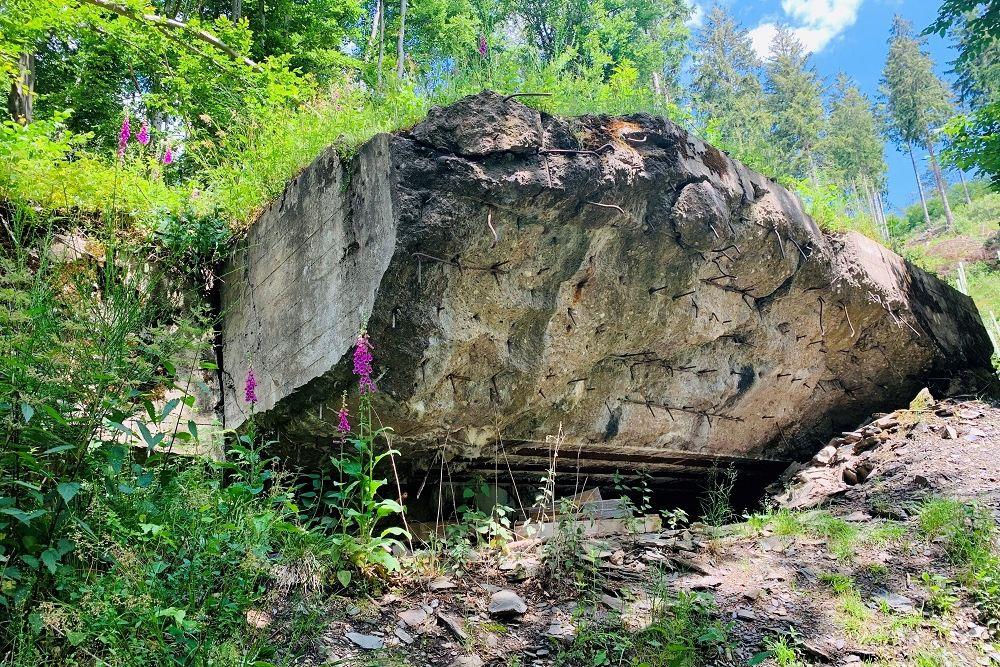 Remains Bunker 118 Hürtgenwald