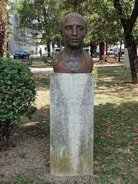 Bust Joze Suran