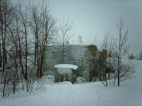 Finish Anti-Aircraft Battery Harakka