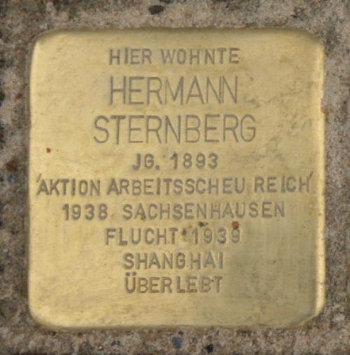Stolpersteine Dohrmannstraße 1