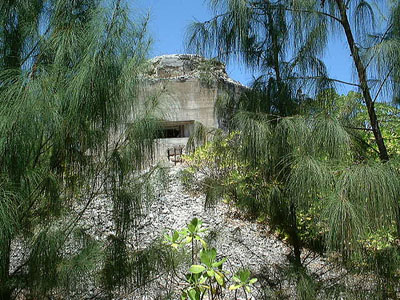 Fortifications Wake Island