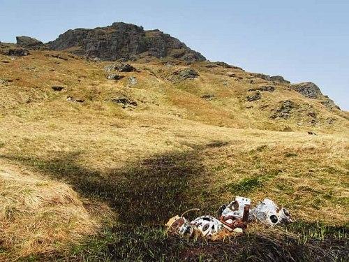 Crash Site & Wreckage Martlet AL251 Beinn Bheula