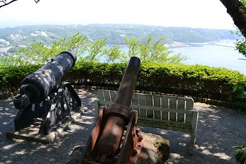 Cannons Shimoda