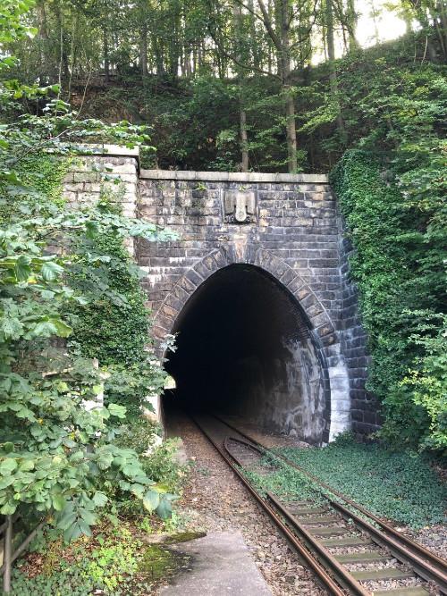 Adelaar met Swastika op Tunnel