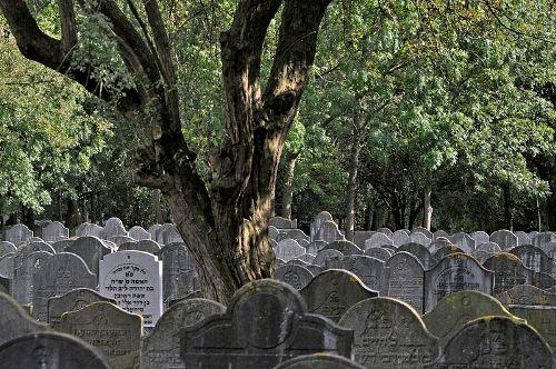 Joodse Begraafplaats Diemen