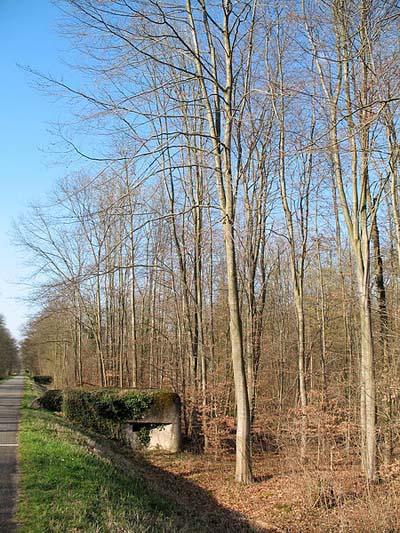 Maginot Line - Casemate Digue de La Robertsau (1)