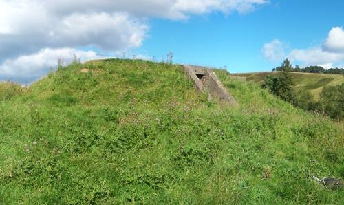 Control Bunker Starfish Decoy Site Auchenreoch Muir