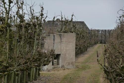 Group Shelter and MG-Casemate Achterdijk