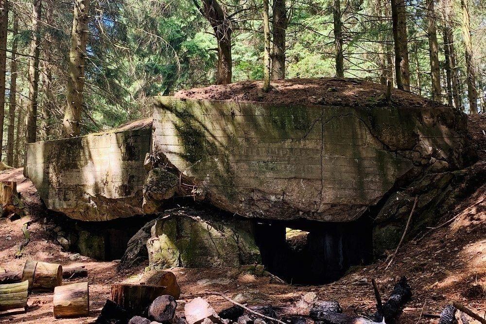 Remains Bunker Hürtgenwald