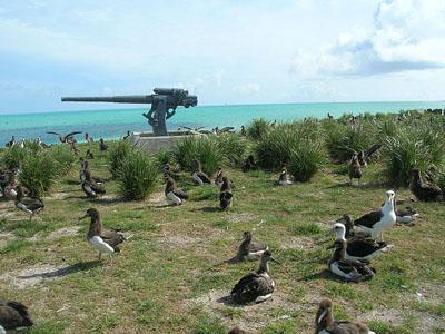 Naval gun Midway