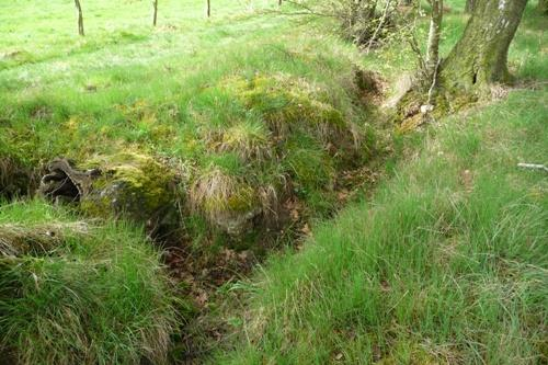 Trench Propsteier Wald