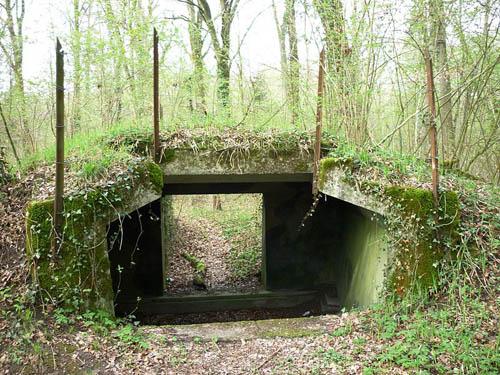 Limmat Line - Artillery Position Bremgarten