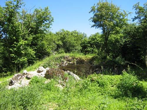 Restant Fort Bezonvaux