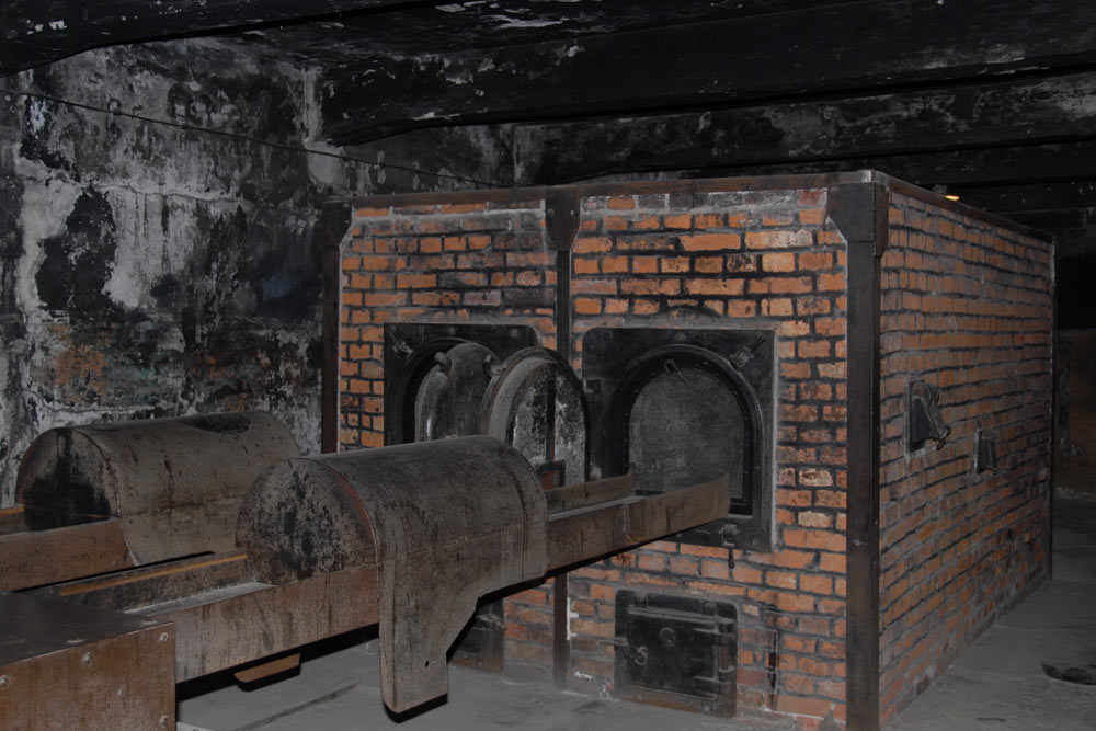 the characteristics of auschwitz a symbol of terror and the holocaust Holocaust teacher resource  auschwitz: the camp of death  auschwitz was regarded as the most effective concentration camp established by the nazi regime in .
