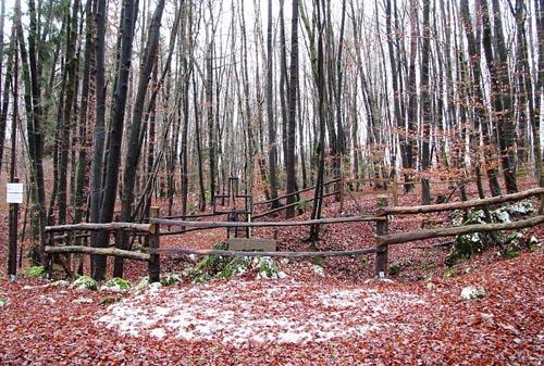 Former Execution Site Veliko Brezarjevo brezno