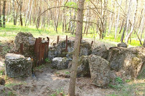Stalinlinie - Restant Bunker Nr. 560