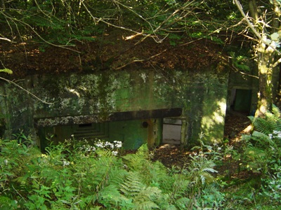 Pillbox No. 131 on Der Buhlert