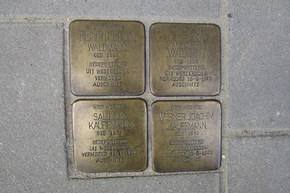 Remembrance Stones Rooseveltlaan 209