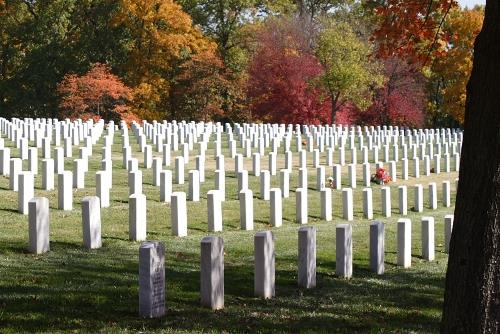 Oorlogsgraven van het Gemenebest Jefferson Barracks National Cemetery